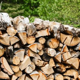 Firewood Bristol: Mixed Seasoned Hardwood Logs